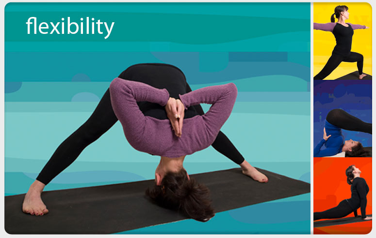 Iyengar Yoga flexibility poses taught by Eight in Cambridge