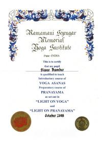 Diane Bamber Iyengar Certificate